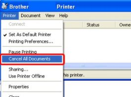 Delete Print Queue and Unlock Printer