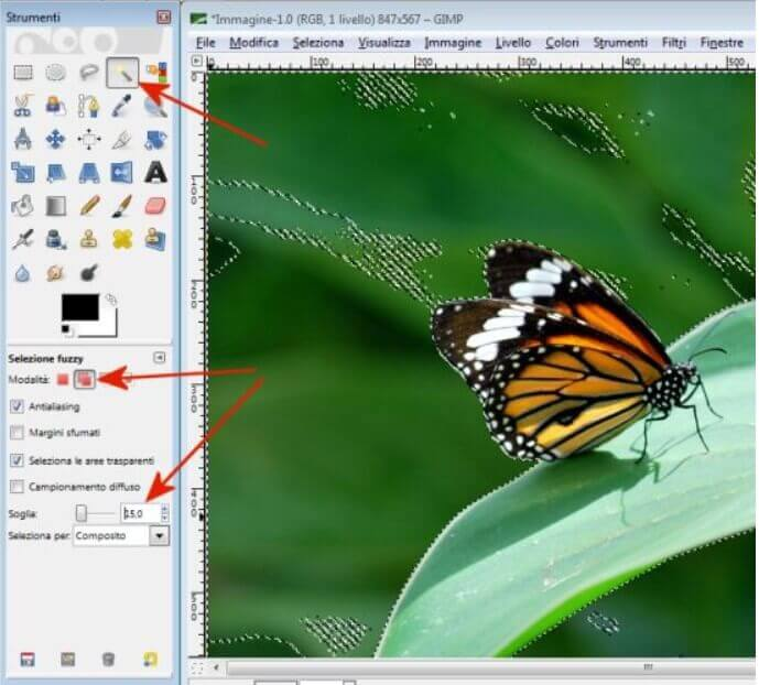 How to remove the background from any photo with GIMP - Image 1