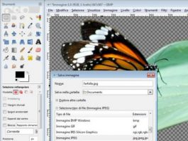 How to Remove the Background From any Photo with GIMP