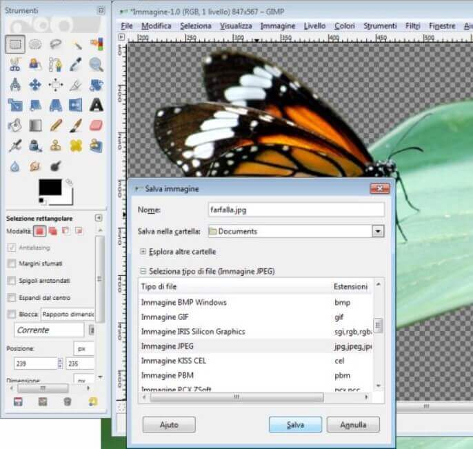 How to remove the background from any photo with GIMP - Image 6