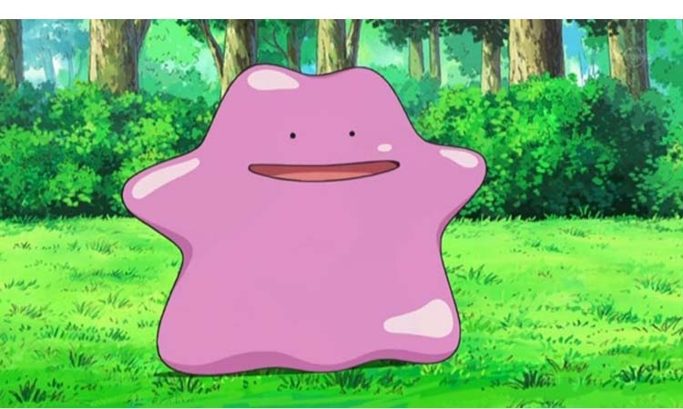 Ditto attacks and combat information