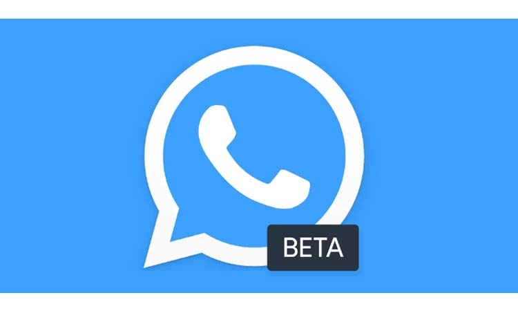 How to have WhatsApp news before anyone else we teach you how to become beta