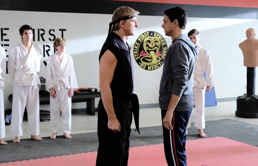 Top 13 Fighting and Martial Arts Series on Netflix and HBO