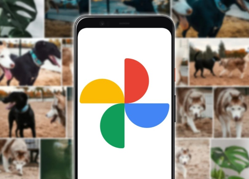 How to download all your photos from Google Photos step by step